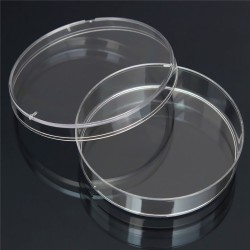 10pcs-55mm-x-15-mm-polystyrene-bacteria-culture-font-b-dish-b-font-disposable-sterilized-font